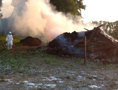 сжигание трупов животных, зараженных сибирской язвой