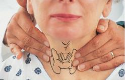 Как проводить пальпацию щитовидной железы