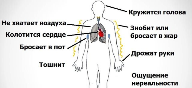 Симптомы вегетосбоев