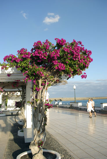 Hafenpromenade Arrecife