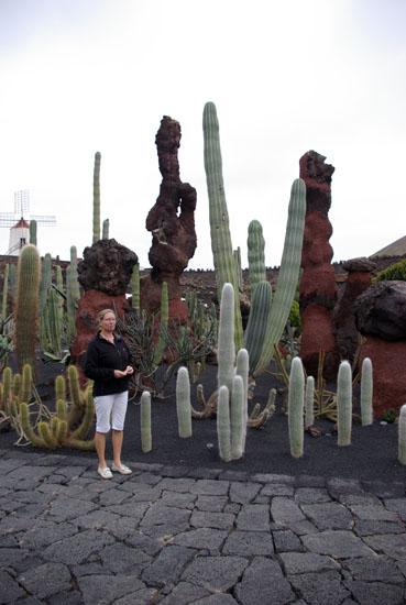 jardindecactus3