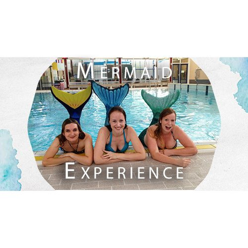 mermaid experience