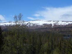 Bergen en ijs vanuit de trein