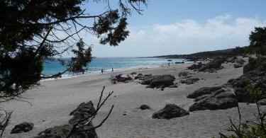 Kedrodasos - the beach for nature lovers