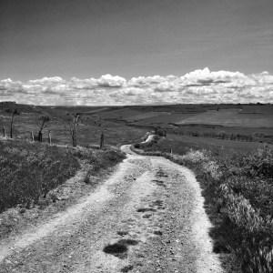 The Camino heading through dry lands