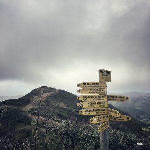 Makara Peak, Wellington, New Zealand