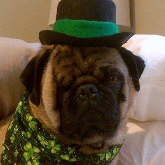 Celebrate St.Patrick's Day with The Shannons & Dewey McNiff