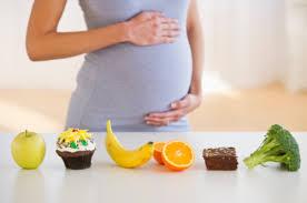 妊婦 食事 小分け