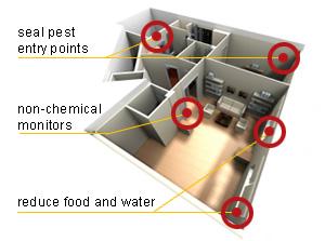 plekken in huis waar plaagdieren kunnen zitten