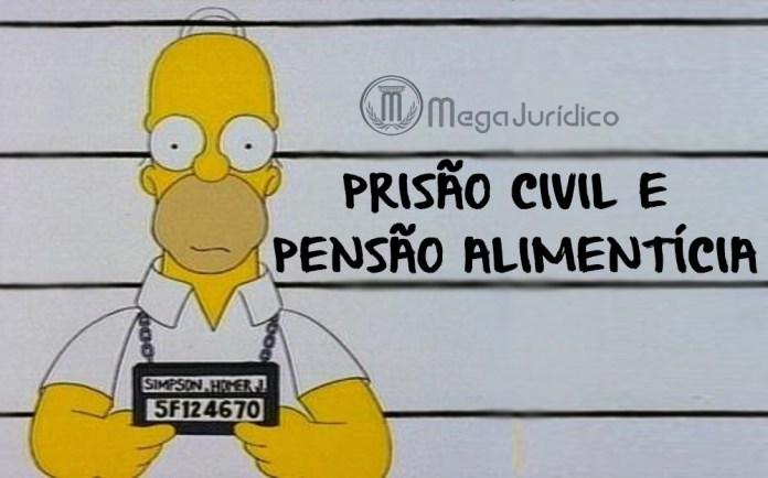homer_prisao-civil