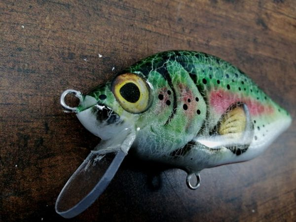 RaiRainbow Trout, MiniCrank, Megalures, Custom lures, fishingnbow Trout, MiniCrank, Megalures, Custom lures, fishing