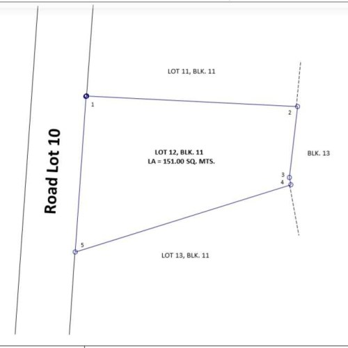 Bank Foreclosed, vacant lot, VERMILLION STREET, CAMELLA SPRINGVILLE CENTRAL PHASE 1, BRGY. MOLINO, BACOOR, CAVITE - Image 3