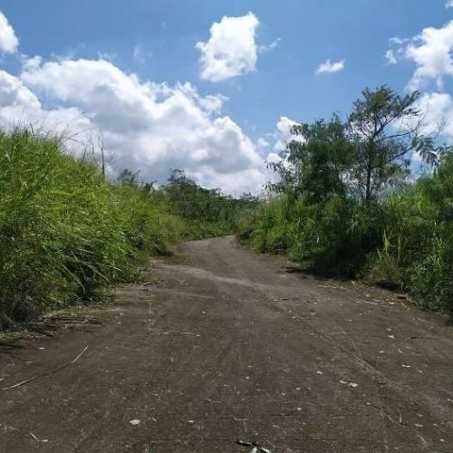 Bank foreclosed Eastland Heights (formerly Forest Hills Golf & Residential Estates), Brgy. Inarawan, Antipolo, Rizal - Image 10