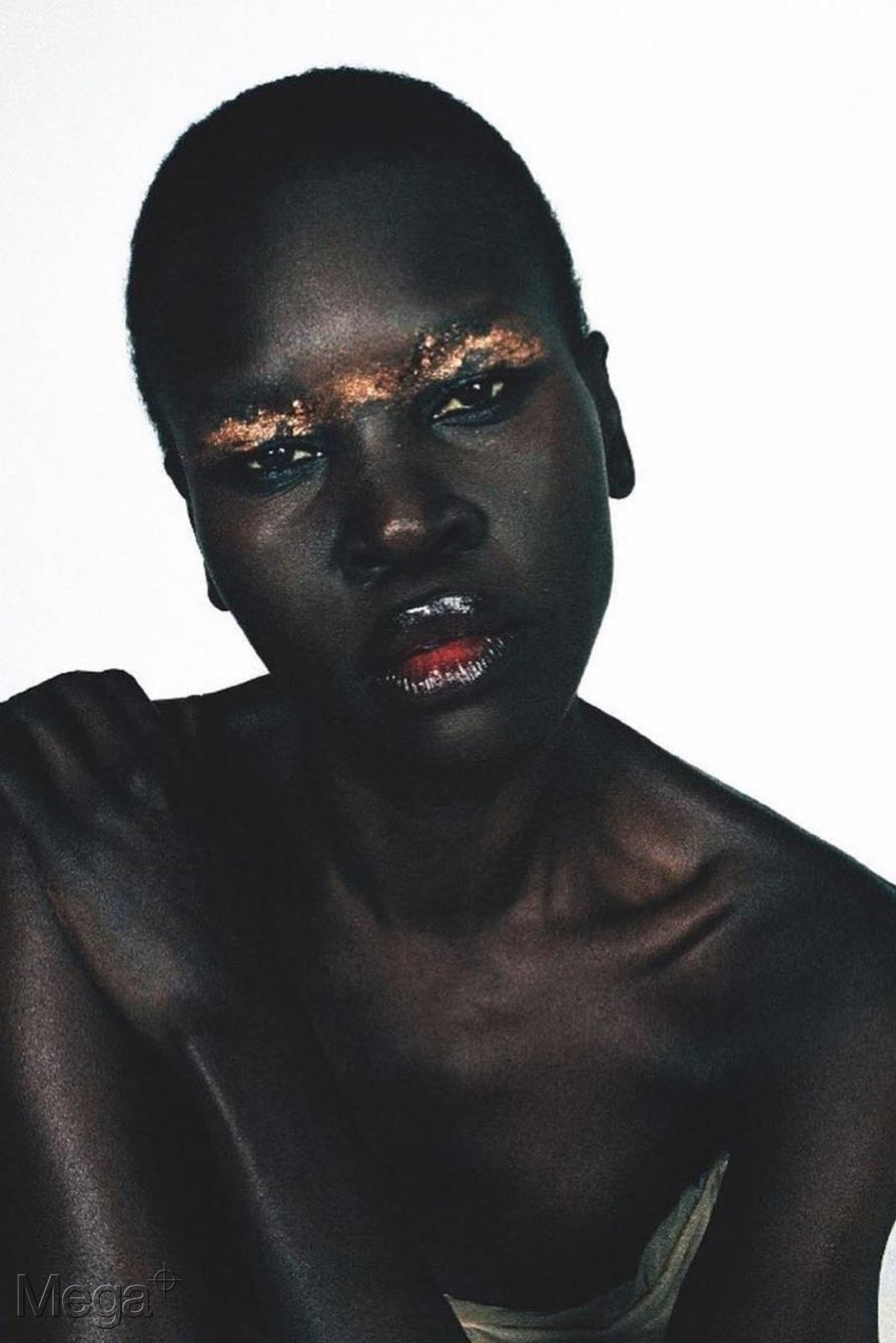 Alek Wek Mega Model Agency