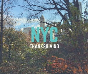 Thanksgiving in New York