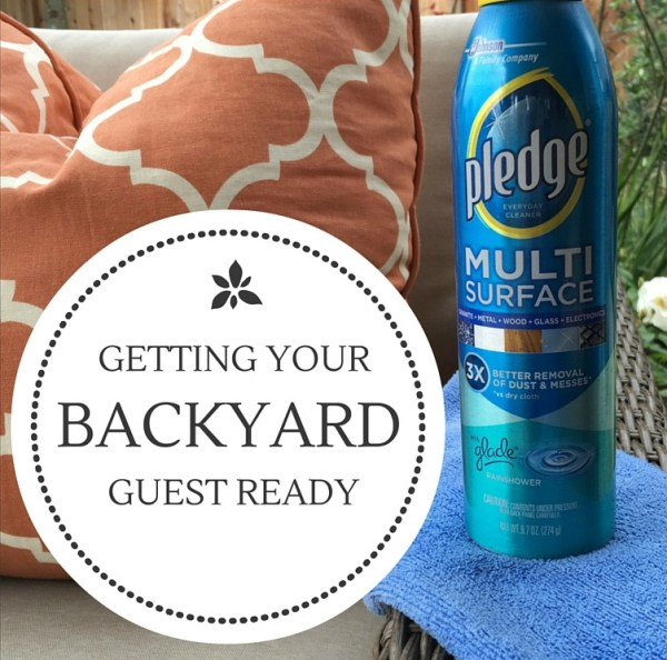 Use Pledge® to get your home and outdoor spaces ready for guests.
