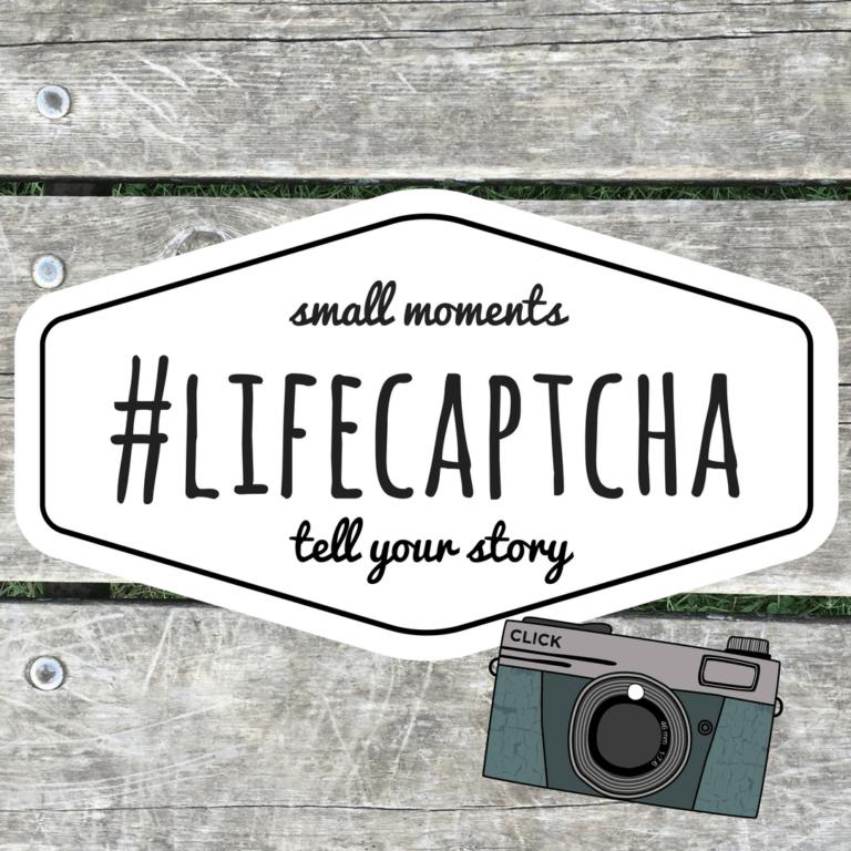 Life Captcha Instagram Challenge