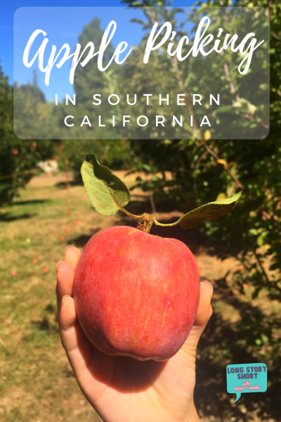 Fall Bucket List – Apple Picking