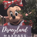 Disneyland's New Max Pass – Is it worth it?