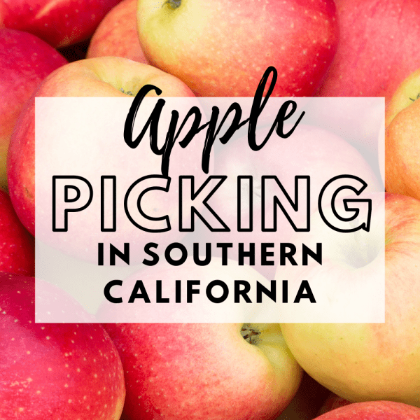 Fall Bucket List - Apple Picking. The best places to go Apple Picking in Southern California for fall family fun