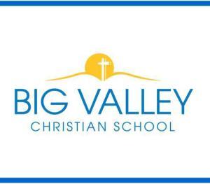 bvcs logo