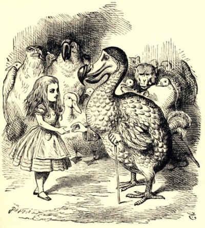 Alice illustrazioni