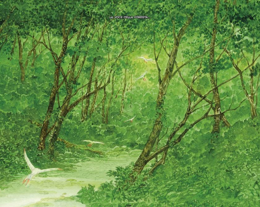 pop-la-foresta-millenaria-02