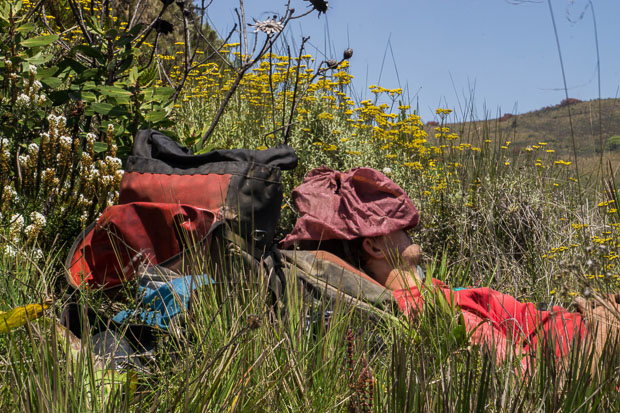 Evan napping with a shirt on his head in the grasses of Kitulo Plateau National Park