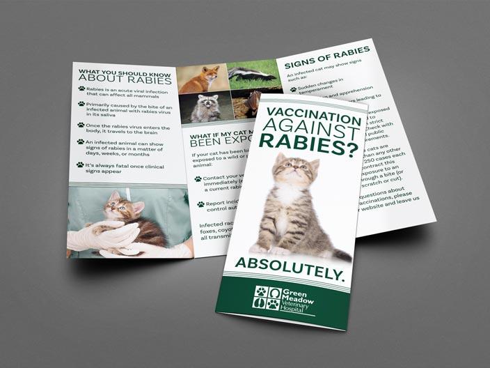 Green Meadow Veterinary Hospital Rabies Brochure