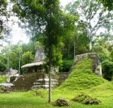 01-Tikal08