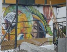 02-Quito17