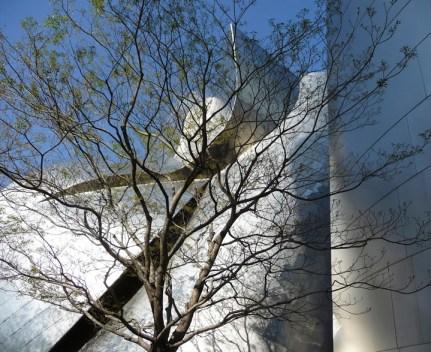 Rick Meghiddo, Meghiddo Architects, www.rick-RE.com , www.naturaltowergarden.com , www.architectureawareness.com , photography, Disney Hall