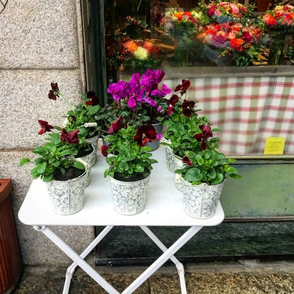 fiori per le amiche 40 anni