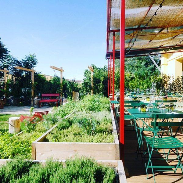 Erba brusca tra i Ristoranti con giardino a Milano