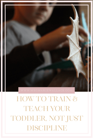 how to train and teach your toddler and not just discipline | meg Marie Wallace