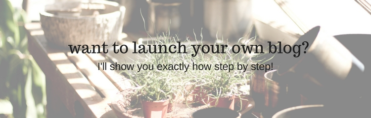 want to start a blog? i'll show you how step by step!!!