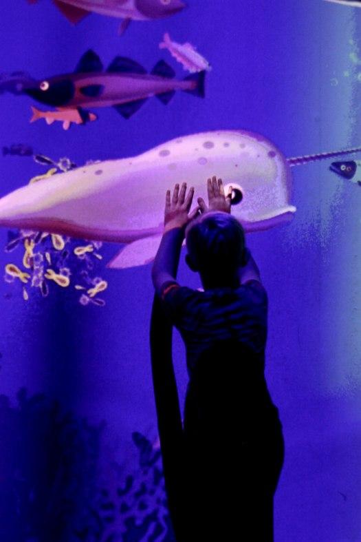 Mandalay Bay Aquarium | Vegas vacation | Meg Marie Wallace Blog |2017