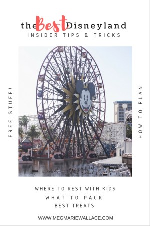 best insider Disney tips/tricks   help for planning your trip to Disneyland and California Adventure   Meg Marie Wallace   tips for kids, how to get free stuff, where to rest, places for free play, what to pack etc..