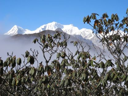The Kangchenjungas in all their splendor