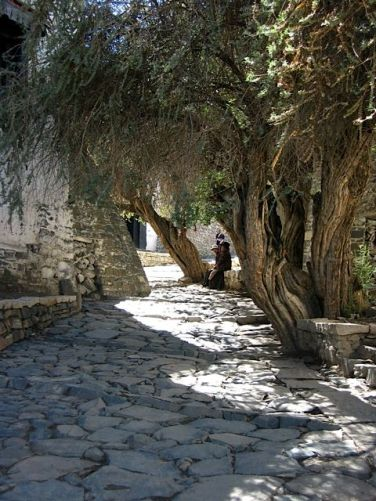 A quiet place outside the monastery