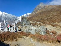 A typical Langtang village