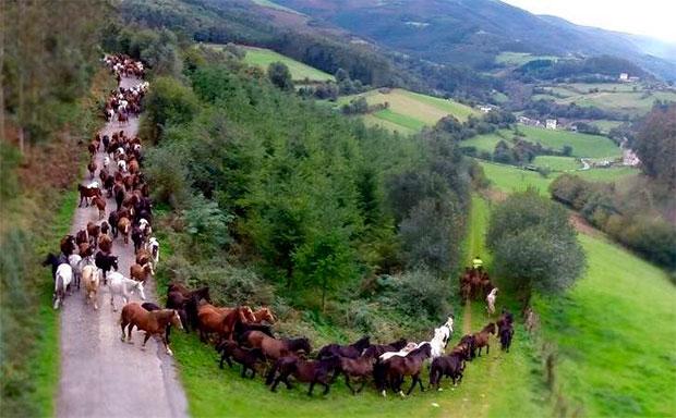 foto: .facebook.com/Asociación-As-San-Lucas-de-Mondoñedo