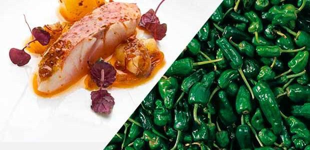 Galicia, el mejor destino para un viaje gastronómico