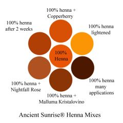Henna Mixes Henna Indigo Cassia And Fruit Juices