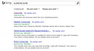 bing reverse ip search