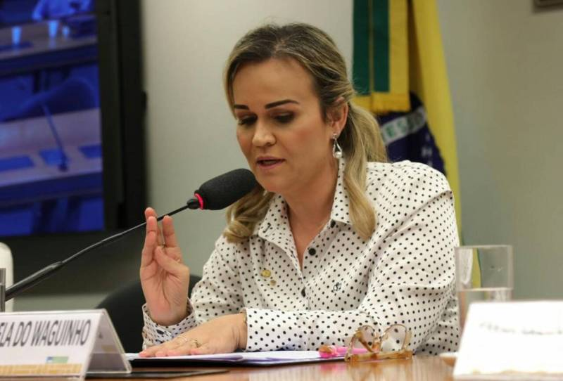 Deputada Daniela do Waguinho busca compromisso de candidatos com a Primeira  Infância Jornal MEIA HORA - Geral