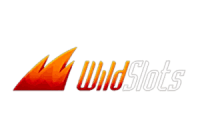 Wild Slots Casino Logo