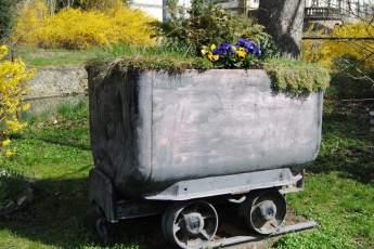 Passend zu Salzgitter: ein bepfalnzter Wagon!