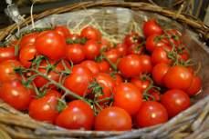 Grad jetzt wo es wärer wird passt ein Tomatensalat doch wunderbar, oder?!