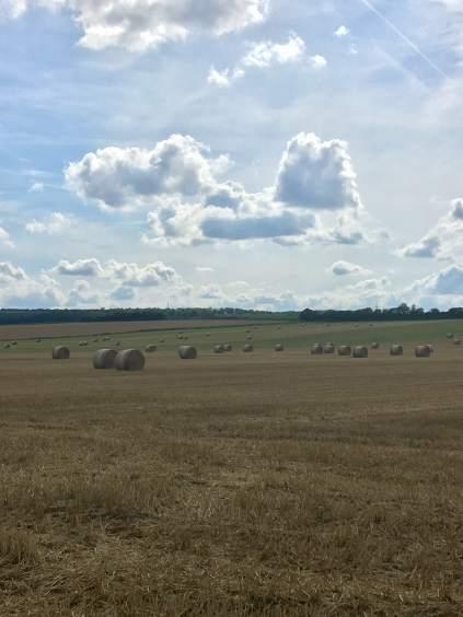 Spätsommertraum: die großen Rundballen auf weitläufigen Feldern.